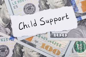 Orland Park Child Support Lawyer